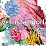 """Vetusta Morla firmaran su """"Mismo sitio, distinto lugar"""" en Bilbao"""