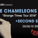 The Chameleons en Bilbao junto con Second Still