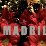 Madbil publican «Noches de Agosto»
